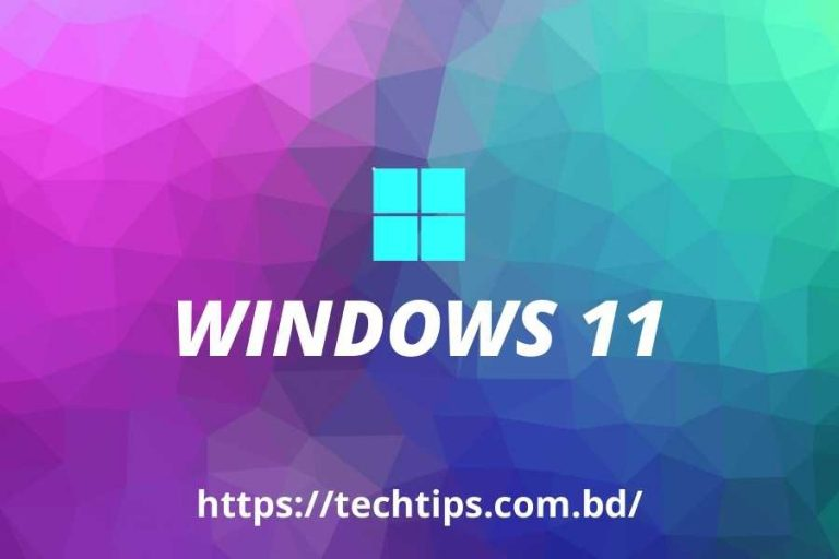 Upgrade To Windows 11 For Free – How To Set Up Step by Step?
